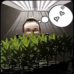 BigMike loves growing cannabis