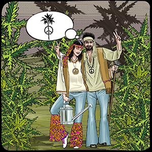 Hippy growers