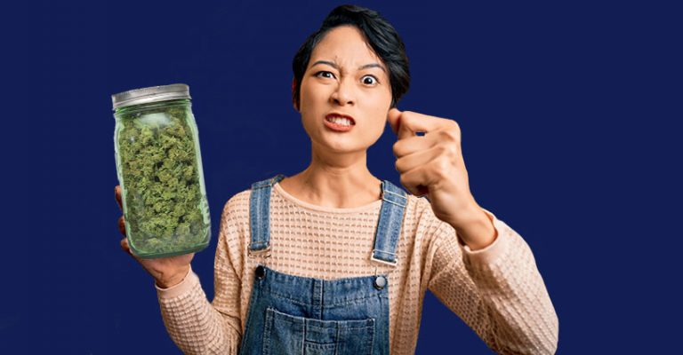 Haters and Success in the Cannabis Industry