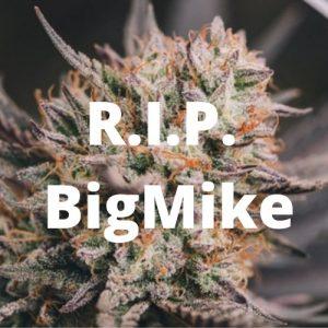 R.I.P. BigMike